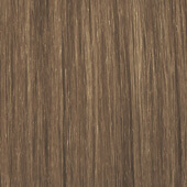 palette_com_deluxe_baseline_natural_color_dark_blonde_170x170