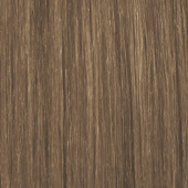 palette_com_deluxe_baseline_natural_color_dark_blonde_to_light_brown_170x170