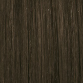 palette_com_icc_natural_medium_brown_to_dark_brown_170x170