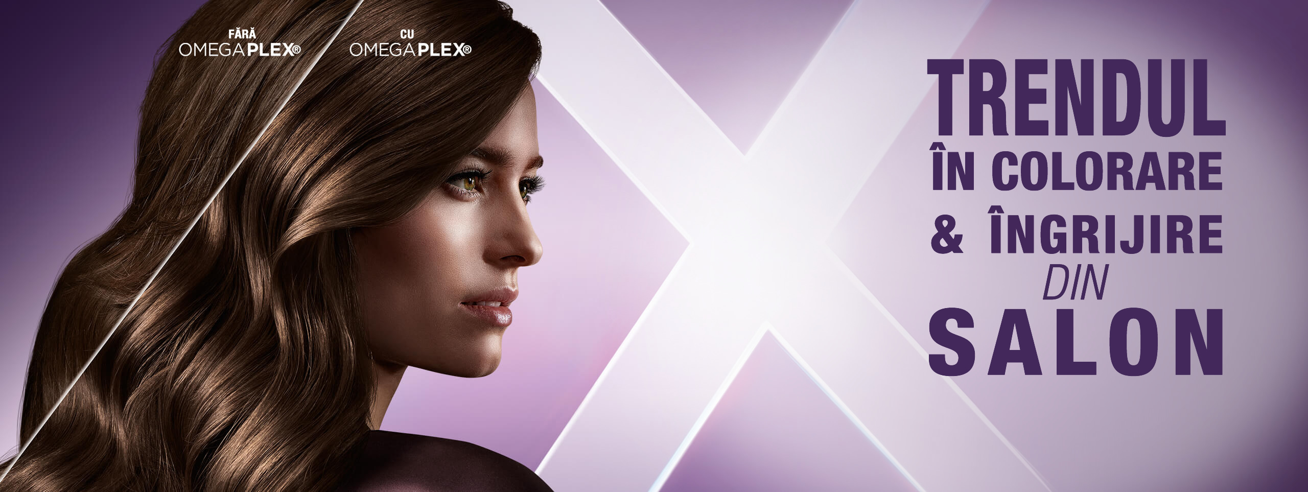 color-expert-home-stage-2560x963
