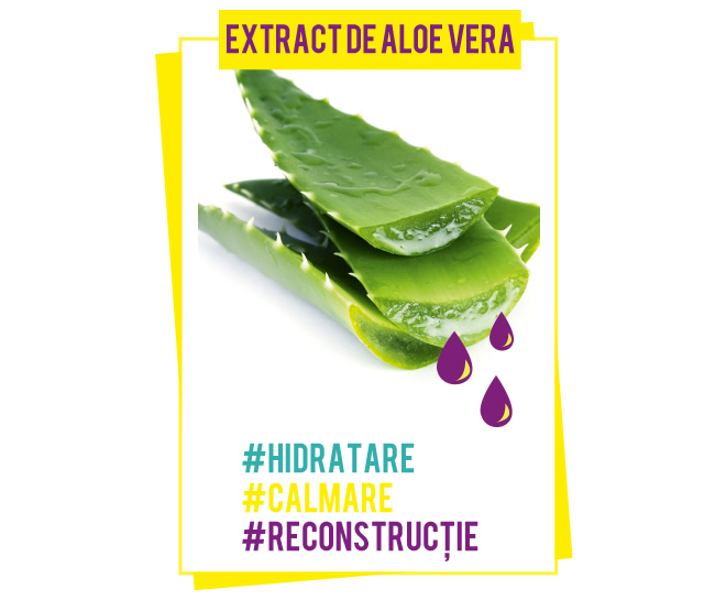 pure_color_com_natural_ingredients_aloe_vera_660x545
